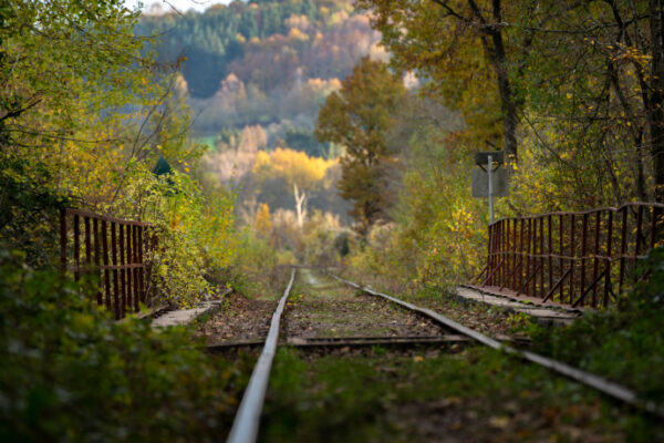 Railway tracks in a rural area